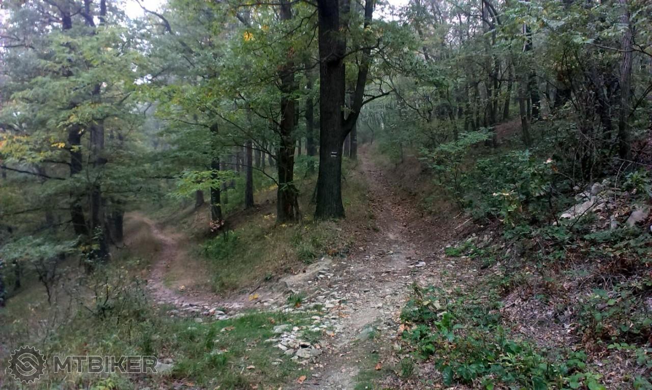 Štúrová lavička Malé Karpaty