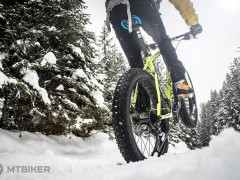 Rock Machine Fatbike Avalanche 30 Zimne Fotky